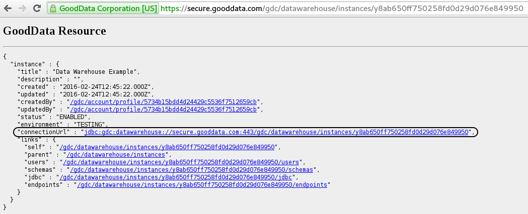 Data Warehouse Instance ID