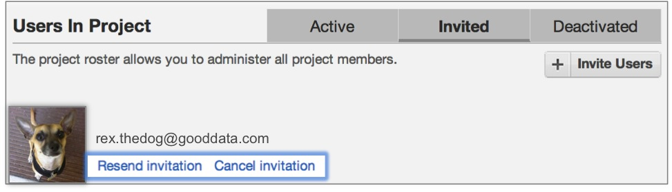 Check the status of a new user invitation